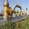 Naft&Gaz Maroon